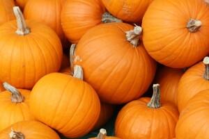 Pumpkin-HD-Wallpaper